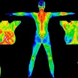 New Science Around Thermal Imaging Image